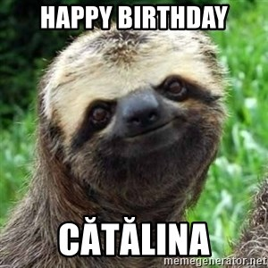 Sarcastic Sloth - Happy birthday Cătălina