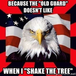 """Bald Eagle - Because the """"Old Guard"""" Doesn't Like When I """"Shake the Tree"""""""