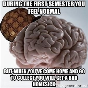 Scumbag Brain - during the first semester you feel normal  but, when you've come home and go to college you will get a bad homesick