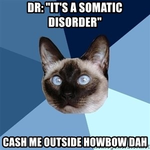 "Chronic Illness Cat - Dr: ""It's a somatic disorder"" Cash me outside howbow dah"