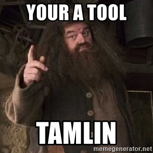 Hagrid - Your a tool  Tamlin