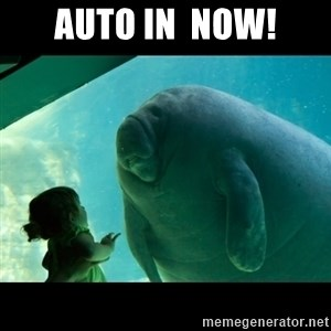 Overlord Manatee - Auto In  NOW!