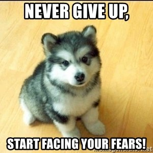 Baby Courage Wolf - Never give up, start facing your fears!