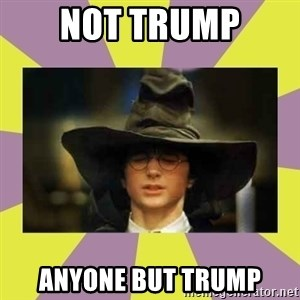 Harry Potter Sorting Hat - not trump anyone but trump
