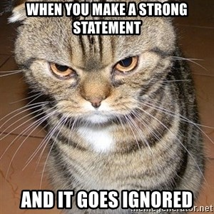 angry cat 2 - When you make a strong statement  And it goes ignored