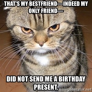 angry cat 2 - that's my bestfriend—indeed my only friend— did not send me a birthday present.
