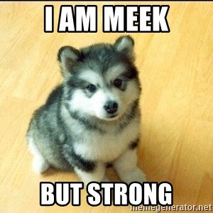 Baby Courage Wolf - i am meek but strong