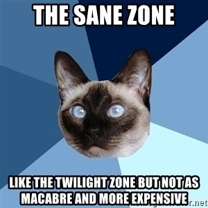 Chronic Illness Cat - The Sane Zone Like The Twilight Zone but not as macabre and More Expensive