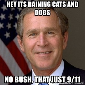 George Bush - hey its raining cats and dogs no bush, that just 9/11