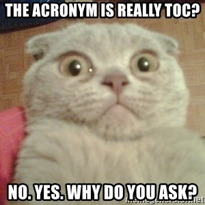 GEEZUS cat - The acronym is really toc? no. yes. Why do you ask?