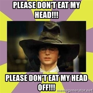 Harry Potter Sorting Hat - please don't eat my head!!! please don't eat my head off!!!