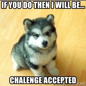 Baby Courage Wolf - if you do then i will be... chalenge accepted