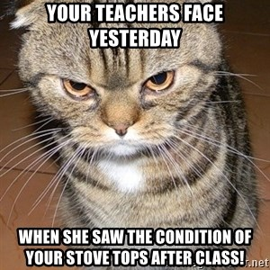 angry cat 2 - Your teachers face yesterday When she saw the condition of your stove tops after class!
