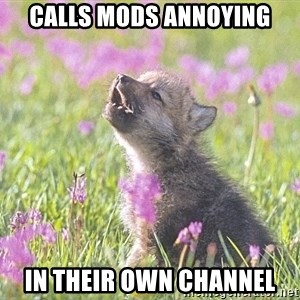 Baby Insanity Wolf - calls mods annoying in their own channel
