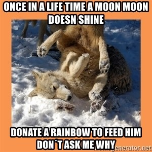 Moon Moon - Once in a life time a moon moon doesn shine donate a rainbow to feed him don´t ask me why