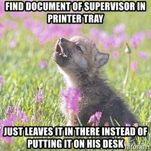 Baby Insanity Wolf - Find document of supervisor in printer tray JUST leaves it in there instead of putting it on his desk