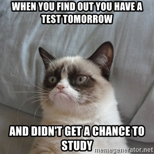 Grumpy cat 5 - When you find out you have a test tomorrow and didn't get a chance to study