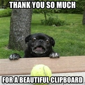 Ermahgerd Pug - Thank you so much for a beautiful clipboard
