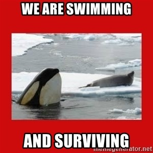 Thanks Obama! - we are swimming and surviving