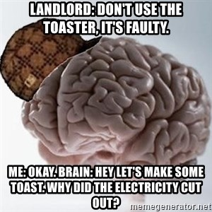 Scumbag Brain - Landlord: Don't use the toaster, it's faulty. Me: Okay. Brain: Hey let's make some toast. Why did the electricity cut out?
