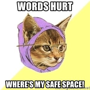 Hipster Cat - Words Hurt where's my safe space!