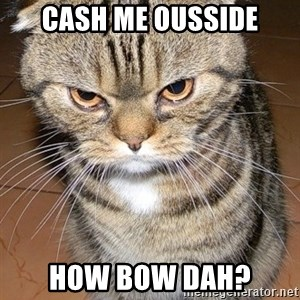 angry cat 2 - cash me ousside how bow dah?