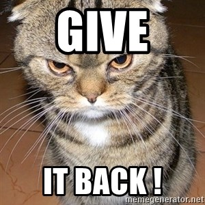 angry cat 2 - Give It back !