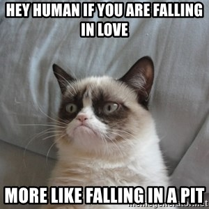 Grumpy cat 5 - hey human if you are falling in love  more like falling in a pit