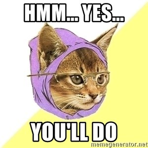 Hipster Cat - Hmm... Yes... You'll do