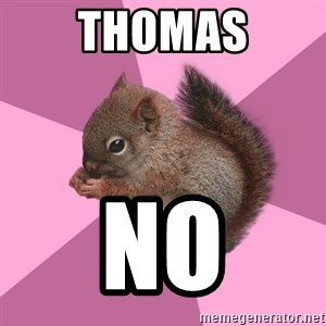Shipper Squirrel - Thomas No