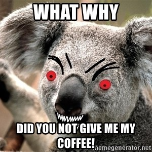 Abortion Koala - WHAT WHY DID YOU NOT GIVE ME MY COFFEE!