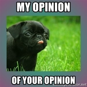 derp - My opinion of your opinion