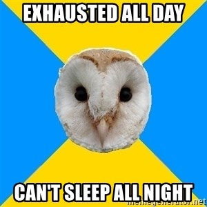 Bipolar Owl - Exhausted all day Can't sleep all night