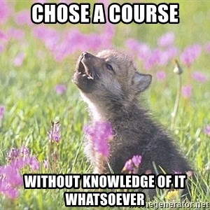 Baby Insanity Wolf - Chose a course without knowledge of it whatsoever