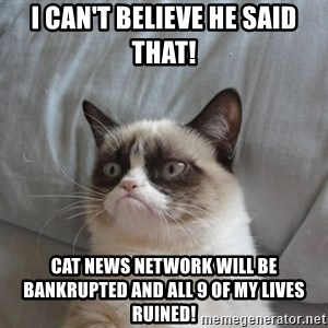 Grumpy cat 5 - I can't believe he said that! Cat News Network will be bankrupted And all 9 of my lives ruined!