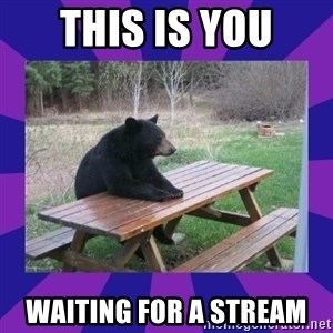 waiting bear - This is you Waiting for a Stream