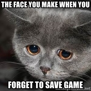 sad cat - the face you make when you forget to save game