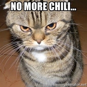 angry cat 2 - no more chili...