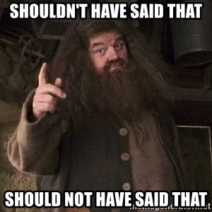 Hagrid - SHOULDN'T HAVE SAID THAT SHOULD NOT HAVE SAID THAT
