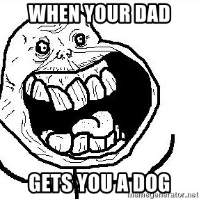 Happy Forever Alone - when your dad  gets you a dog