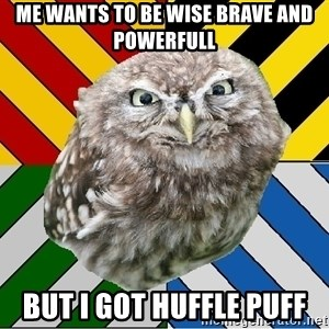 JEALOUS POTTEROMAN - me wants to be wise brave and powerfull but i got huffle puff
