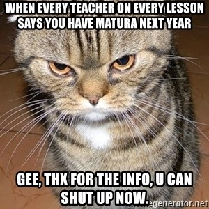 angry cat 2 - WheN every teacher oN every leSson Says you have matura next year Gee, tHx For the info, u can shut up now.