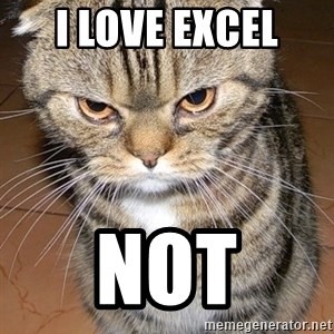 angry cat 2 - I LOVE EXCEL  not