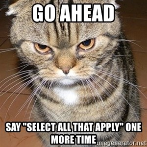 "angry cat 2 - Go ahead Say ""select all that apply"" one more time"