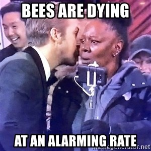 Ryan Gosling Oscars - Bees are dying at an alarming rate