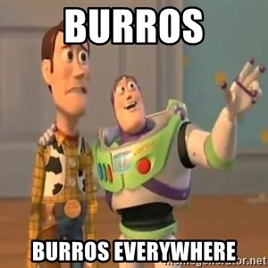 X, X Everywhere  - burros burros everyWHERE