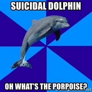 Drama Dolphin - Suicidal dolphin  Oh what's the porpoise?