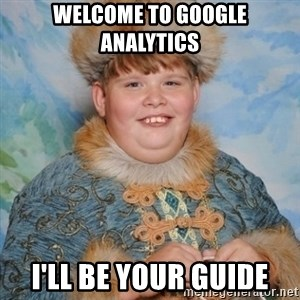 welcome to the internet i'll be your guide - Welcome to Google analytics I'll be your guide