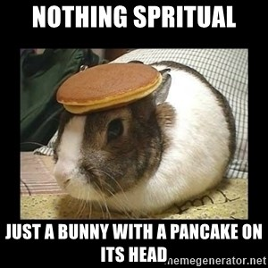 Bunny with Pancake on Head - Nothing spritual Just a bunny with a pancake on its head