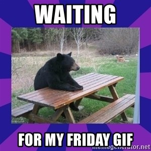 waiting bear - Waiting for my friday gif